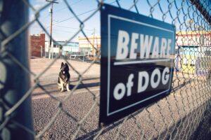 iowa dog bite attorney